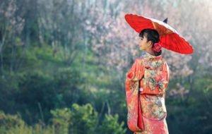 Kimono Kleid