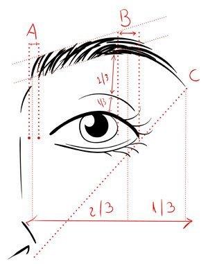 Augenbrauen Form messen